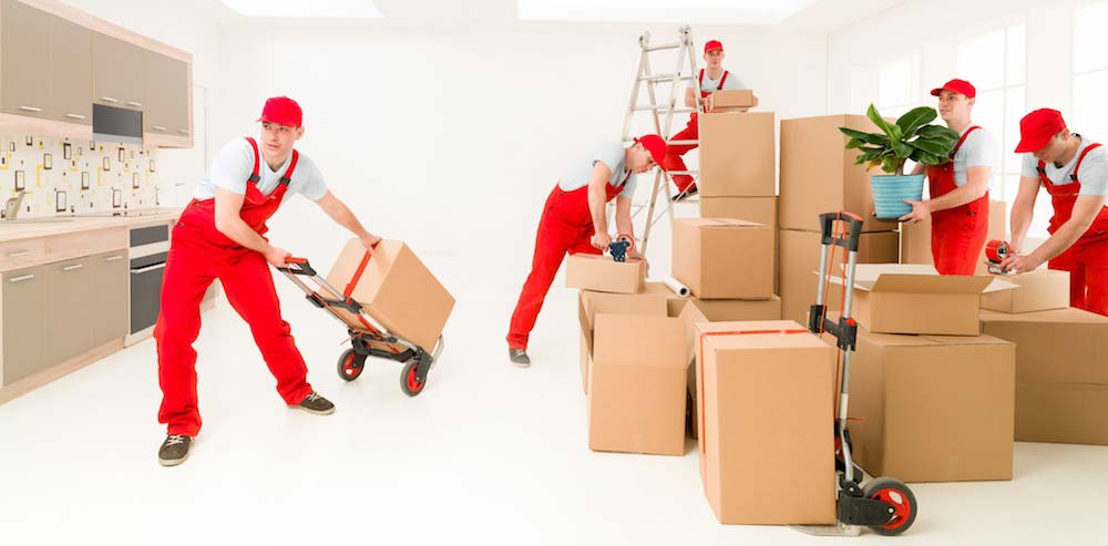 Quality packing service & furniture installation